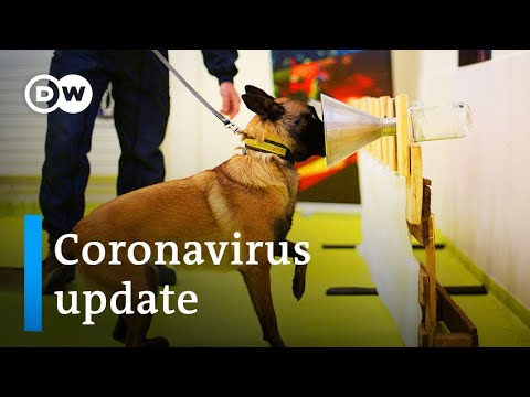 Cases surge in Brazil +++ Can dogs sniff out COVID-19? | Coronavirus update