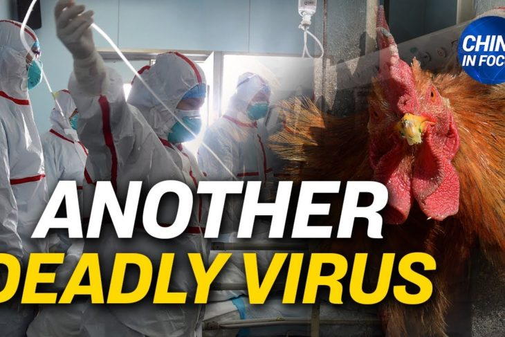 China reports human case of bird flu; Cover-up of post-vaccine deaths in China? |